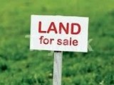 Commercial Land for Sale at Nittambuwa - Gampaha
