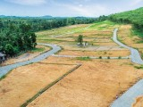 Meepe Araliya Land for Sale (LOT-202)